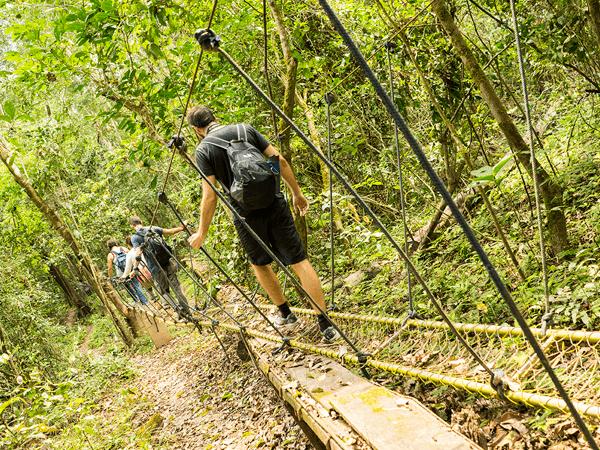 Tambopata Jungle Excursion