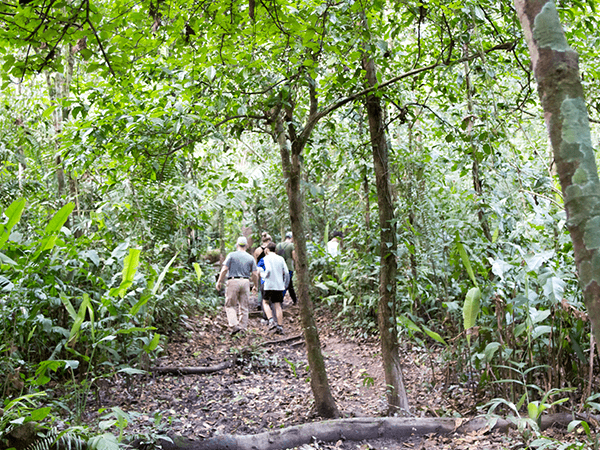 Tambopata Jungle Tour