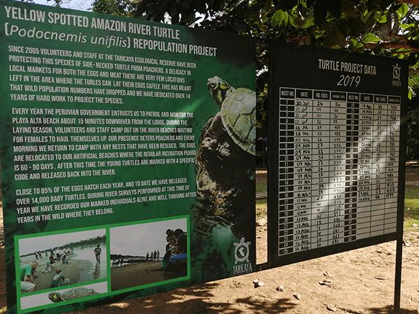 TambopataTaricaya Tour 2