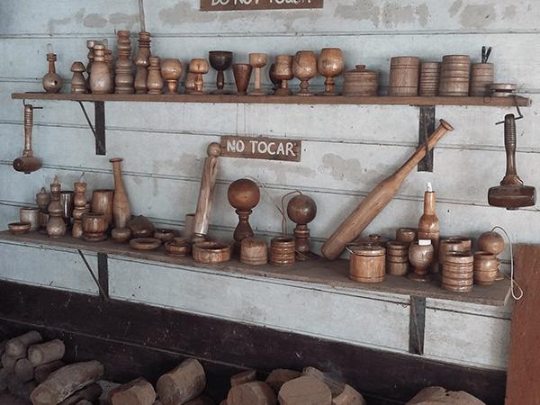 Tambopata Mahogany Tour 4