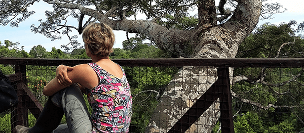 Tambopata Canopy Tour