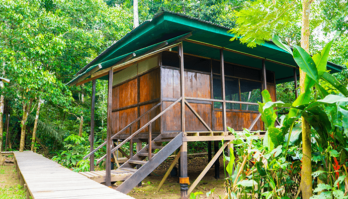 Tambopata Cabin 2