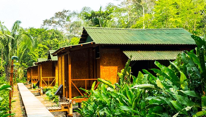 Tambopata Cabin 3