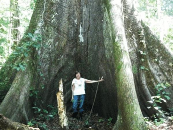 Tambopata Touristic Program 4